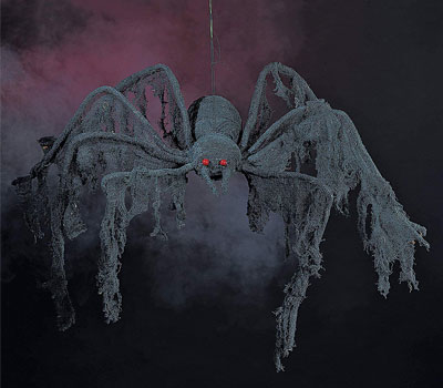 Creepy-Black-Spider