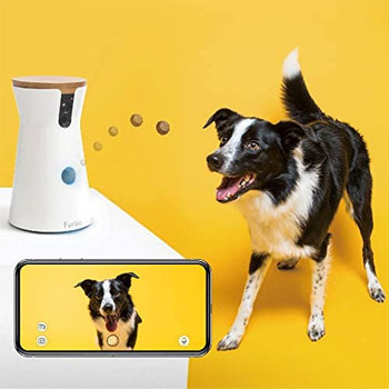 Furbo-Dog-Camera-with-Treat-Tossing-Technology